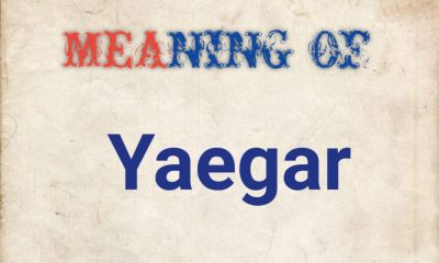 Meaning of yaegar