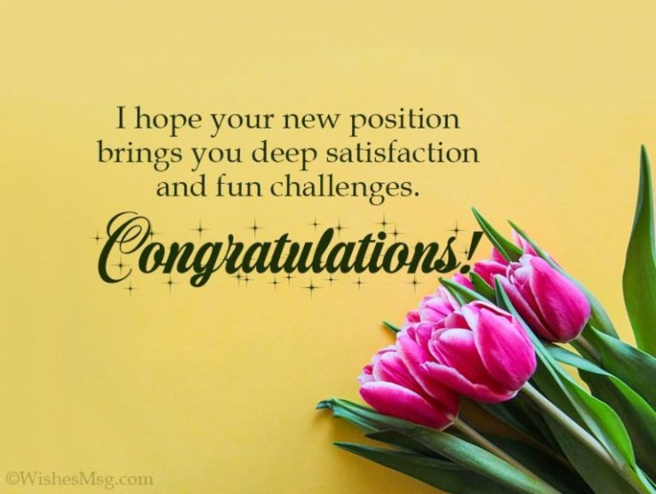 congratulations on promotion image2