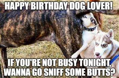 birthday wish for dog image11