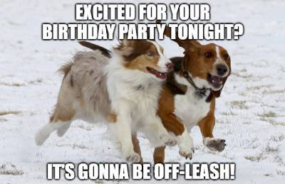 birthday wish for dog image7