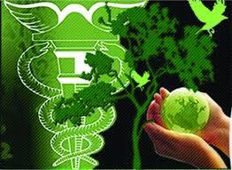 O que é contabilidade ambiental e para que serve