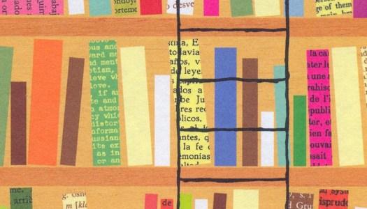 Sophie Divry y el amor por las bibliotecas