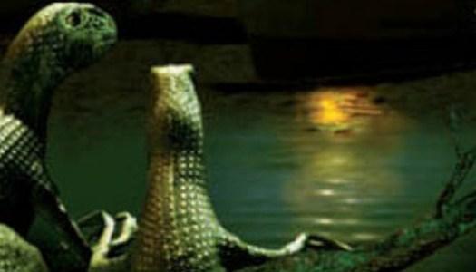 La guerra de las salamandras: la cultura no está (ni se la espera)