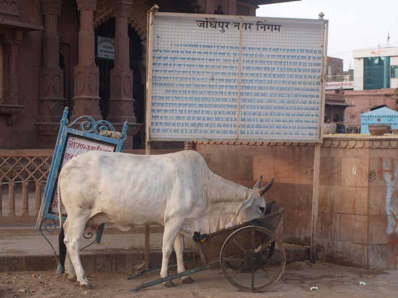 India-Relatos-escritos1