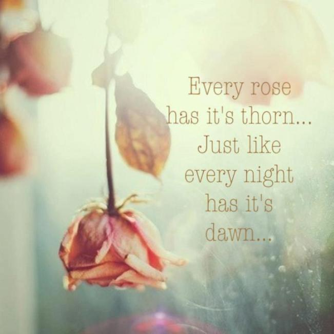 71a Relax and Succeed - Every rose has its thorn