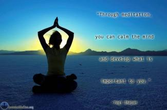 356 Relax and Succeed - Through meditation you can calm the mind