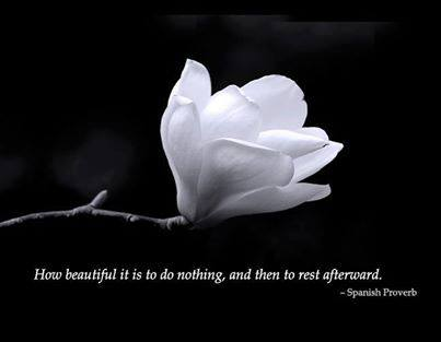 383 Relax and Succeed - How beautiful it is to do nothing