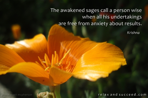423 Relax and Succeed - The awakened sages