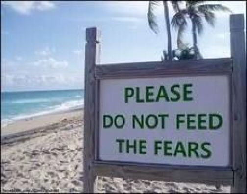482 Relax and Succeed - Please do not feed the fears