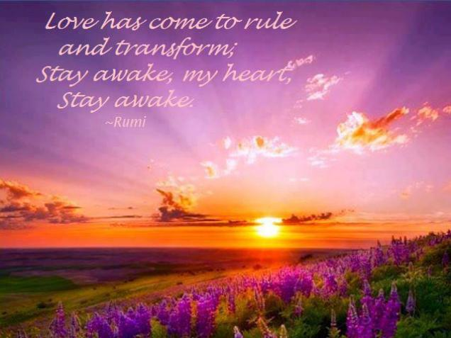 513 Relax and Succeed - Love has come to rule