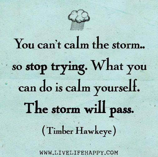 517 Relax and Succeed - You can't calm the storm