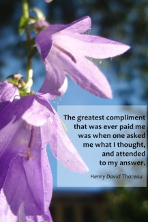 638 Relax and Succeed - The greatest compliment
