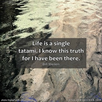 743 Relax and Succeed - Life is a single tatami