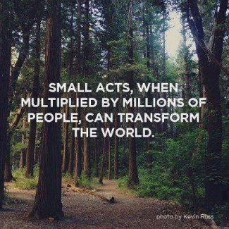 890 Relax and Succeed - Small acts