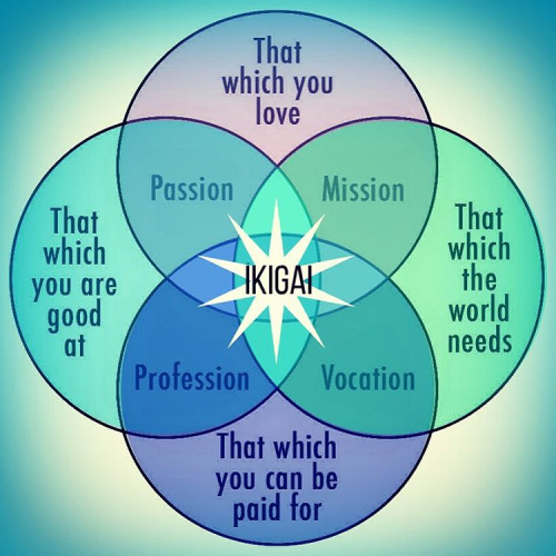 960 Relax and Succeed - Ikigai