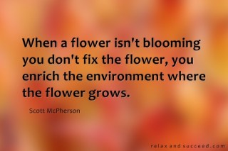 1019-relax-and-succeed-when-a-flower-isnt-blooming