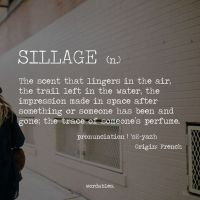 The Sillage of Life Itself