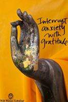 Discoveries in Gratitude