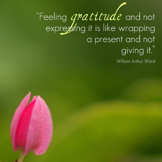 1271 Relax and Succeed - Feeling gratitude and not expressing it