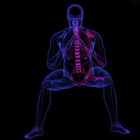 Douleur sacro ilaque - Quelle est la fonction de l'articulation sacro iliaque