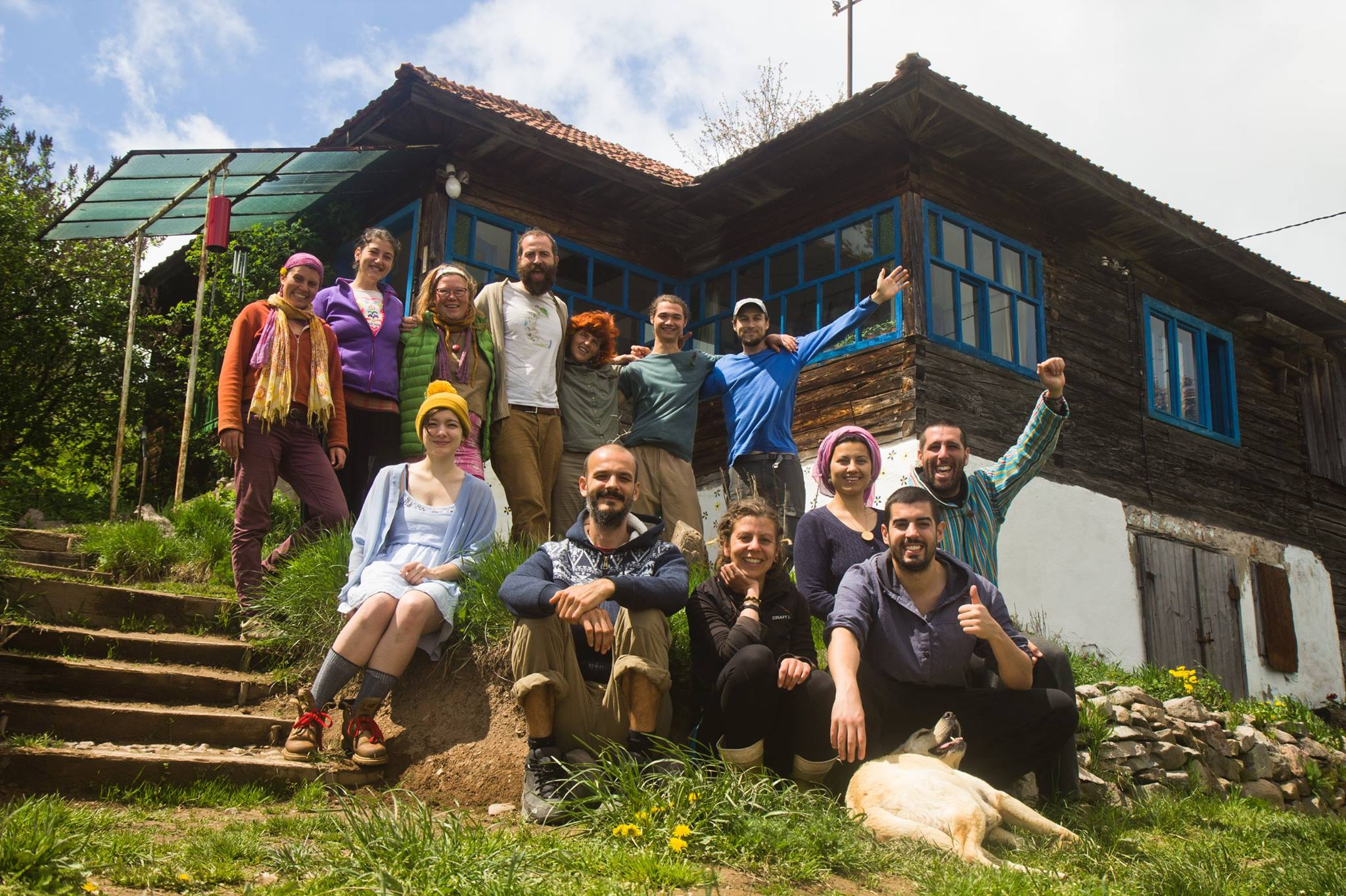 Dandelions and Dew Drops - Our time at Aurora Community, Romania