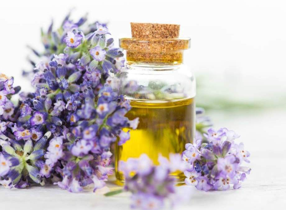 Lavender Essential Oil – Recipe Ideas For The Homemade DIY Crafter