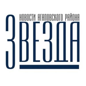 газета Звезда