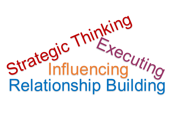 Strategic Thinking Influencing Relationship Building Executing Leadership Domains strengths