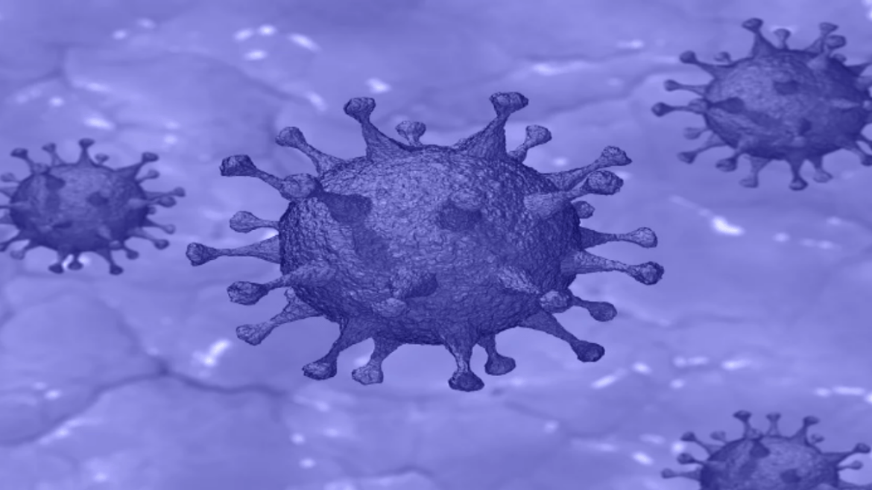 Technical Exploration on Coronavirus