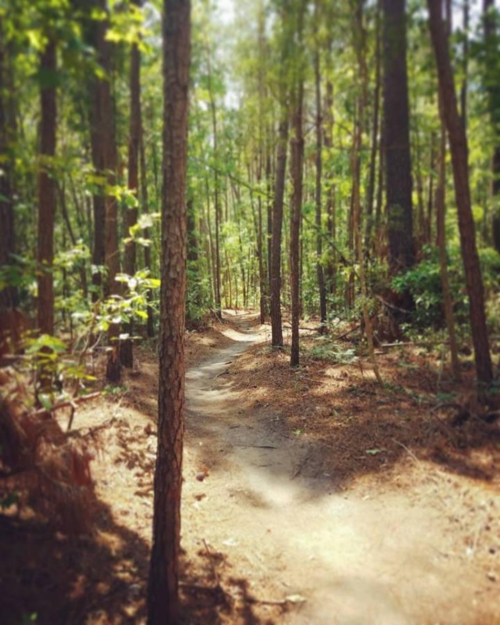 Myrtle Beach Trails