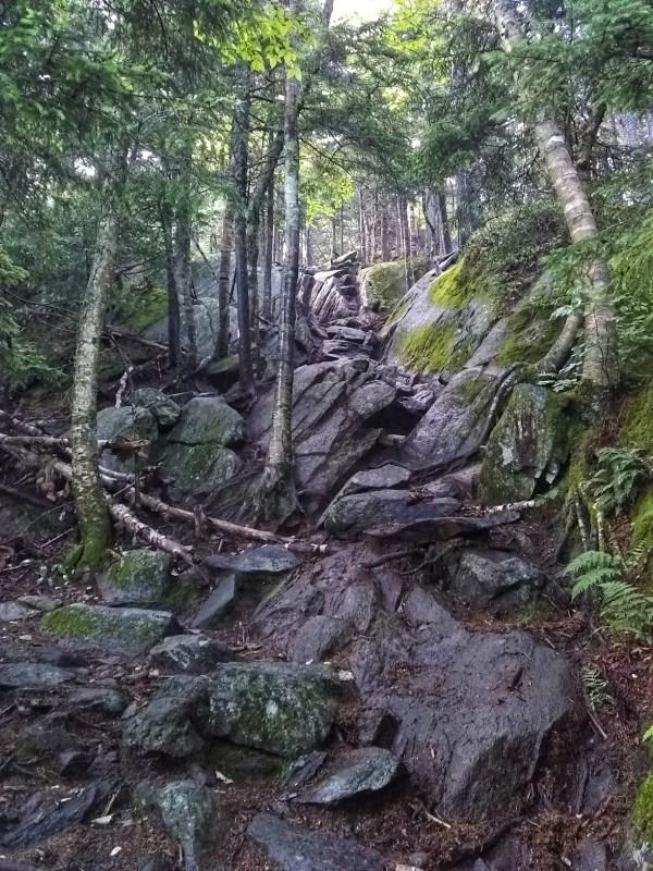 Benefits of trail running