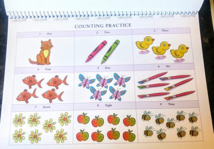 Role Play Teacher Pack - Counting Practice
