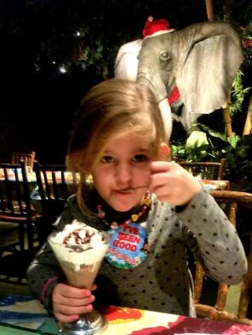 Chocolate ice cream and toffeee sauce sundae