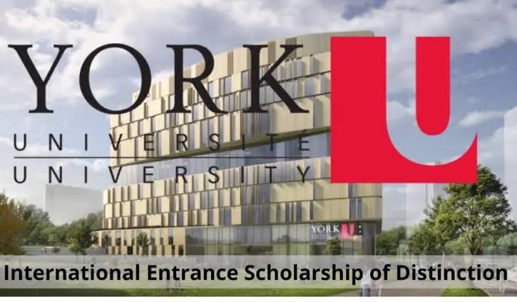 York University Undergraduate Scholarships in Canada 2021 – Funded