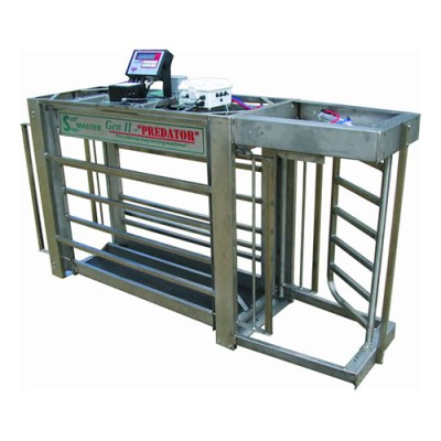 Predator Hog/Sheep Automatic Sorting Scale