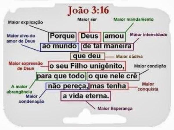 JOAO316