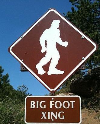 Hele 14 % av respondentene i en amerikansk meningsmåling svarte at de trodde på den apelignende skapningen big foot. Foto: Ashish S. Hareet, Wikimedia Commons.