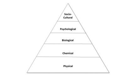 Figure 1 Pyramid of Science