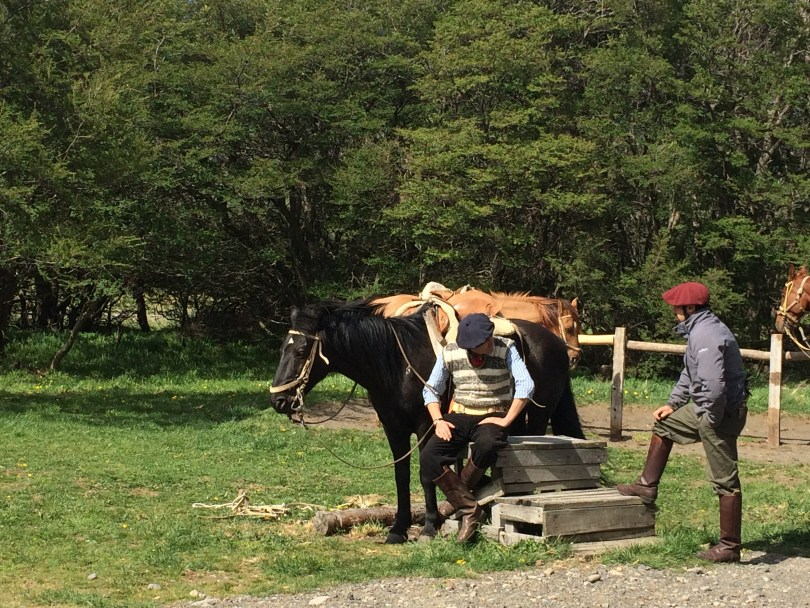 The gaucho preparing my horse