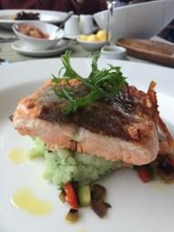 Salmon on mashed potatoes.