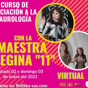 CURSO DE INICIACIÓN EN LA SAUROLOGÍA – MAESTRA REGINA «11» – VIRTUAL