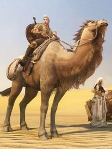 BDO camello 2