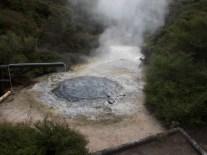 Te Puia - Eine von zig heißen Quellen