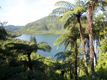 Lake Rotokakahi (The green Lake)