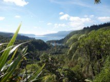 View to Lake Tarawera
