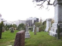 Friedhof direkt neben dem Motorway, manche Büros schauen auch direkt auf ein Grab