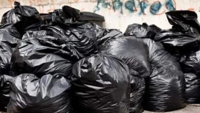 Photo of Familia halla un millón de dólares en bolsa de basura mientras paseaba
