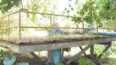Photo of El INAPA interviene Haina y Nigua; lleva soluciones a Samaná