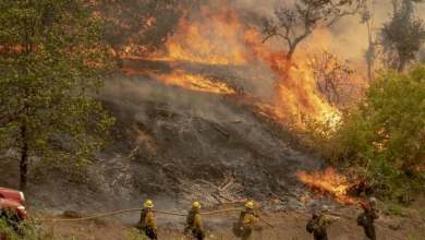 Photo of Más de 40 incendios activos disparan alarmas en peor temporada en California