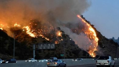 Photo of El incendio cerca de Los Ángeles baja intensidad tras quemar 5,500 hectáreas